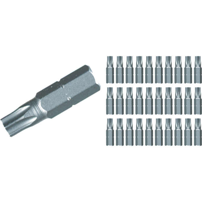 Torx® Contractor Insert Bit T25 Bulk Pack of 30 Bits